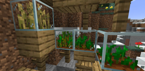 Plant In a Jar Мод 1.16.5 (Растения в банке)