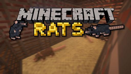Мод на крыс в Майнкрафт 1.16.5